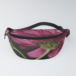 Pink Chrysanthemums 3 Fanny Pack