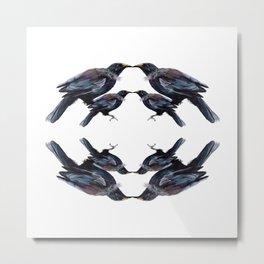 Tui - sweet harmonies Metal Print