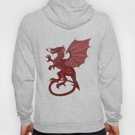 Cymru am byth Hoody