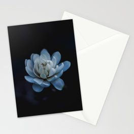 Flower photography by Xuan Nguyen Stationery Cards