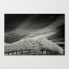 Le Parc Canvas Print