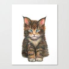 Little Kitten II Canvas Print