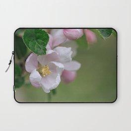 Tender Apple Tree Blossoms In Spring Laptop Sleeve