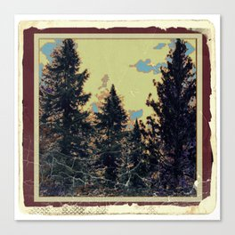 SHABBY CHIC ANTIQUE PHOTO PINE TREES ART Canvas Print