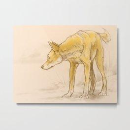 Tall Dingo Metal Print