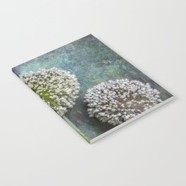 Three Allium Flowers Notebook