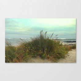 Ocean Sands Canvas Print