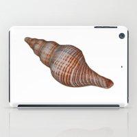 seashell iPad Cases featuring Seashell by Judith Lee Folde Photography & Art