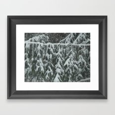 Natrual Decor Framed Art Print