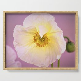 White Poppy at Sunset by Reay of Light Serving Tray