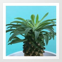 Euphorbia hypogaea(blue) Art Print