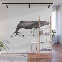 Humpback whale Megaptera Wall Mural