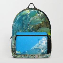 Watercolor Seascape, St John 29, USVI Backpack