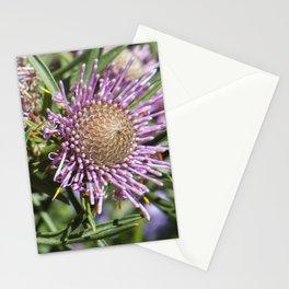 Protea Isopogon Stationery Cards