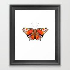 Geobutterfly Framed Art Print