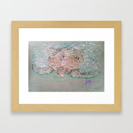 Green Sea Turtle Framed Art Print