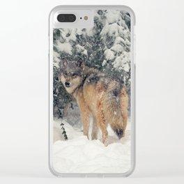 Raksha in the snow Clear iPhone Case
