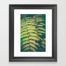 Woodland Fern Framed Art Print