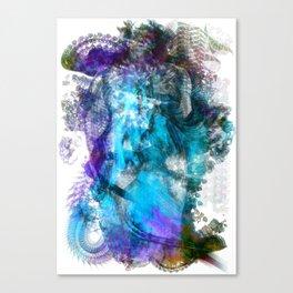 Vast2: Sight Canvas Print