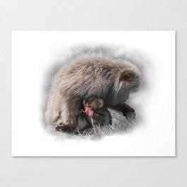Baby Snow Monkey Canvas Print