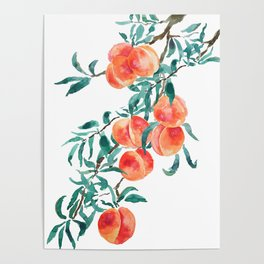 peach watercolor Poster