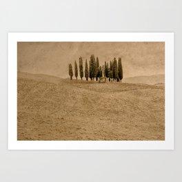 Tuscany - Study 28 Art Print