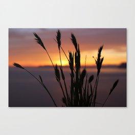 Sunset Sillhouette Canvas Print