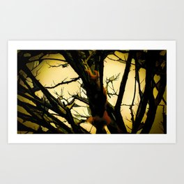 Squirrel in the tree Art Print