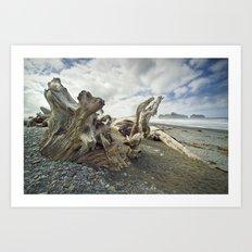 Driftwood on Rialto Beach No 0163 Art Print