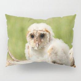 Wind Blown Pillow Sham