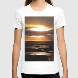 Copper Seascape Delight T-shirt