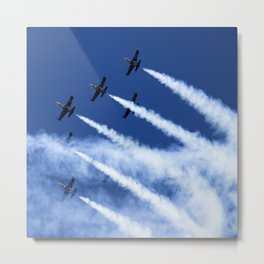 Flying formation Metal Print