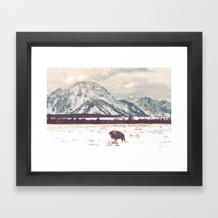 Bison & Tetons Framed Art Print