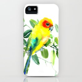 Sun Parakeet iPhone Case