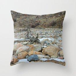 Always Evolving Throw Pillow