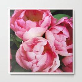 Beautiful Pink Tulips (Instagram) Metal Print