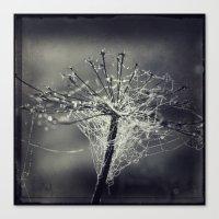 chandelier Canvas Prints featuring chandelier by Dirk Wuestenhagen Imagery