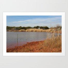Pond Brush Art Print