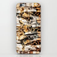 giraffes iPhone & iPod Skins featuring Giraffes by RIZA PEKER