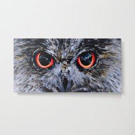 Seeing: The Eyes of an Owl Metal Print