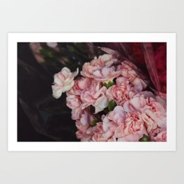What In Carnations? Art Print