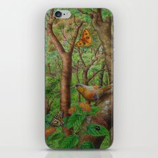Beautiful forest iPhone & iPod Skin