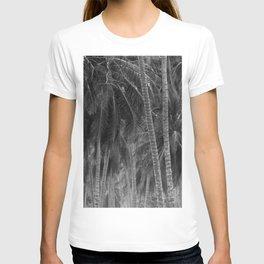 Black and White monochrome coconut palm trees T-shirt