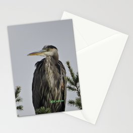 Tree Top Heron at Dawson Creek Park Stationery Cards