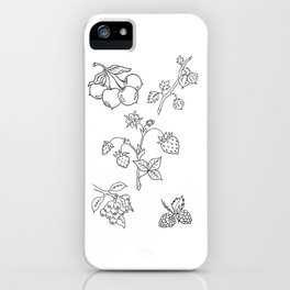 Fruit Variety Study Design — Mixed Fruits Illustration — Strawberry and other Fruits Design iPhone Case