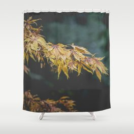 Faded Yellow Acer Leaves Shower Curtain