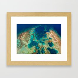 Colours of the Reef Framed Art Print