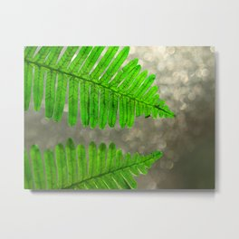 Ferns After The Rain Metal Print