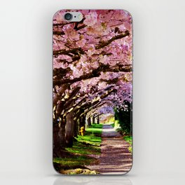 trees and blossoms iPhone Skin