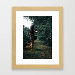 Fresh Picked Framed Art Print